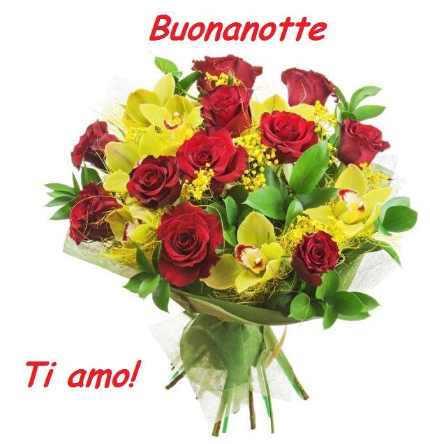 Buonanotte fiore for Foto di rose bellissime