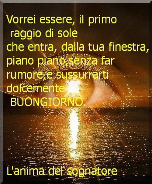 Top Buongiorno amore YY75