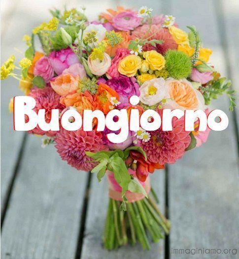 Immagini buongiorno for Immagini bellissime buongiorno