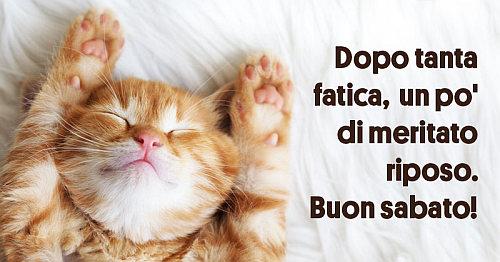 Immagini buongiorno for Immagini divertenti buongiorno sabato