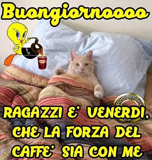 Immagini buongiorno for Immagini divertenti venerdi