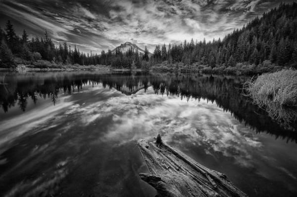 50 great sfondi bianco e nero tumblr sfondo for Disegni bianco e nero paesaggi